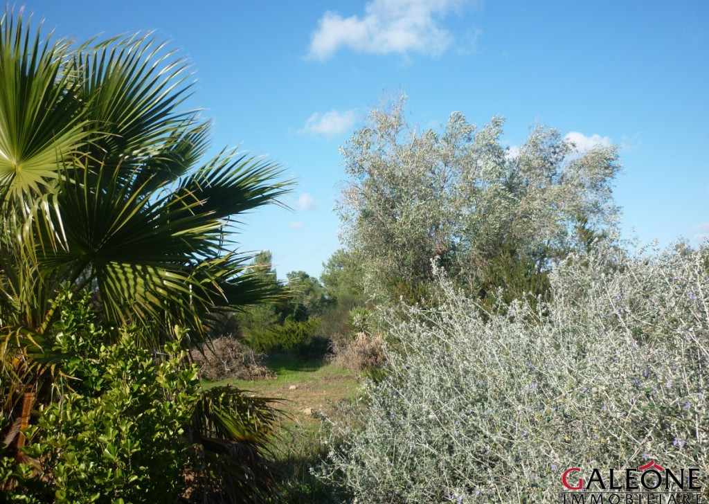 Sale Villa San Cesario di Lecce - Salento – Charming detached 4bedroom villa with swimming pool, land and garden, in the heart of the Salento countryside. Locality