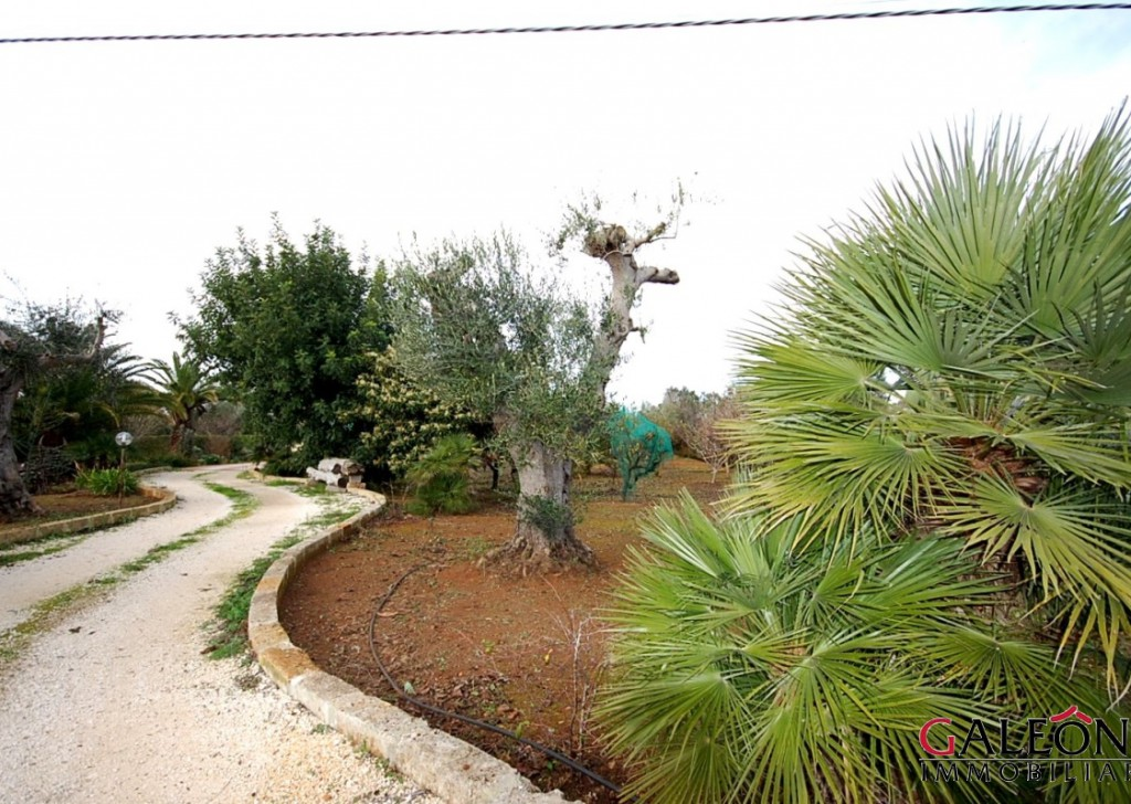 For Sale Country house  Galatina - Salento, Collemeto (Le) - Detached freehold 2bedroom house, in the Salento countryside.  Locality