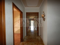Lecce, Zona Conservatorio - A beautifully arranged three bedroom first floor apartment.  - 11