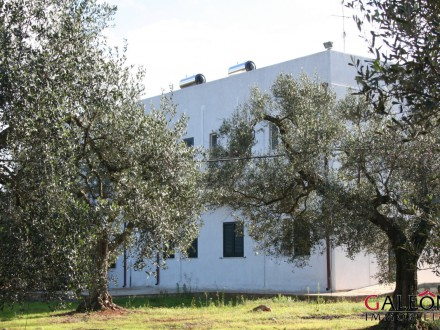 B&B for sale in Galatone - Salento - Apulia.